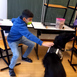 Hundebesuch in der 1B